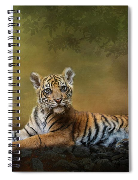 Practicing My Big Kitty Stare Spiral Notebook