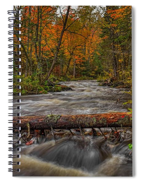 Prairie River Tree Crossing Spiral Notebook