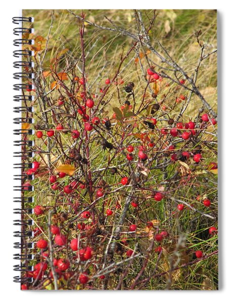 Prairie Rosehips Spiral Notebook