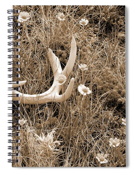 Prairie Spring Spiral Notebook