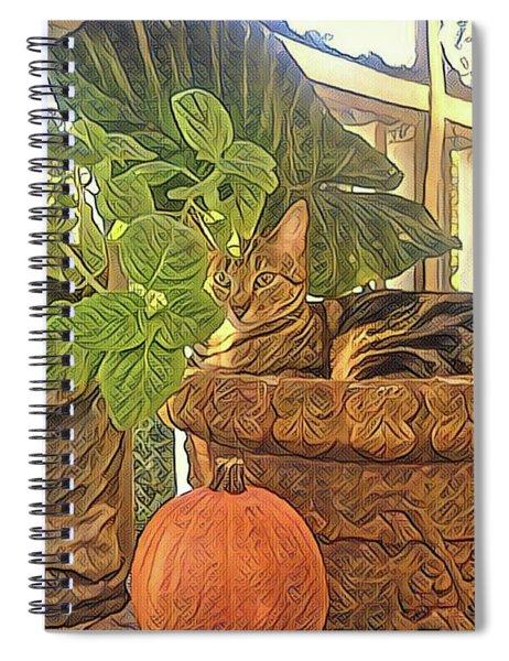 Precious Pumpkin Spiral Notebook