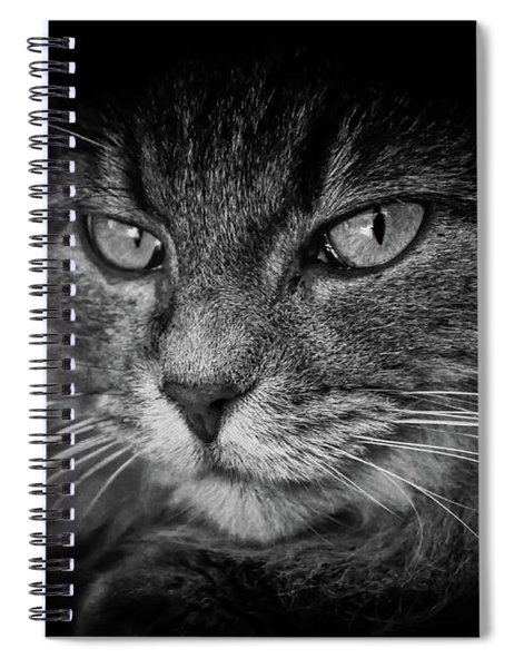 Predator Spiral Notebook