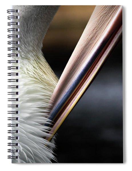 Preen Spiral Notebook