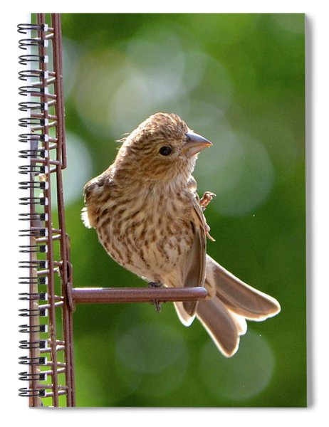Preening Spiral Notebook