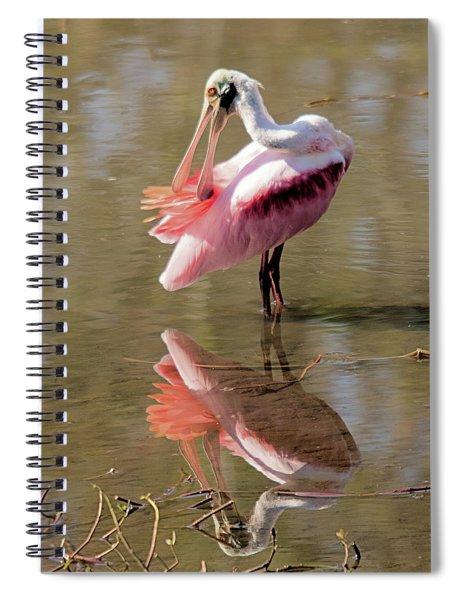 Preening Spoonbill Spiral Notebook