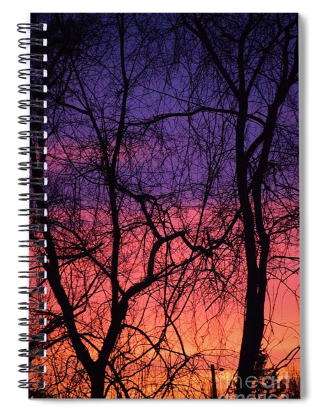 Spiral Notebook featuring the photograph Prelude To The Cold by Patti Whitten