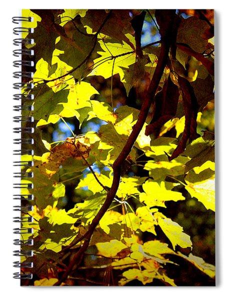 Pretty Nature Spiral Notebook