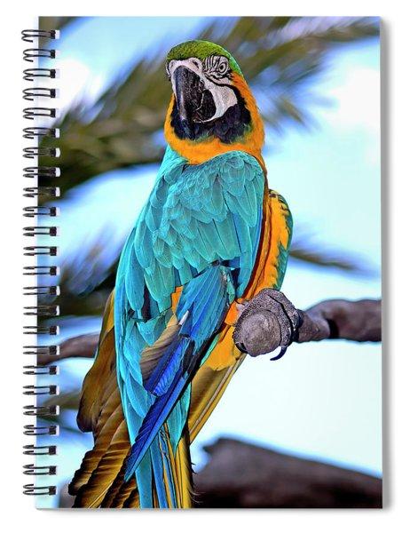 Pretty Parrot Spiral Notebook