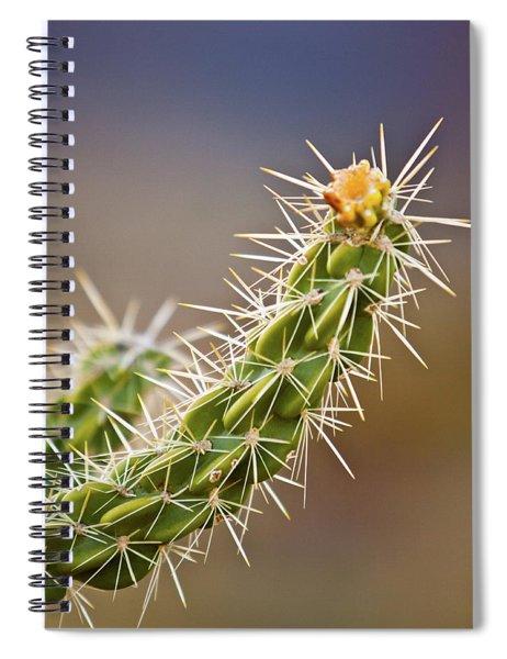 Prickly Branch Spiral Notebook