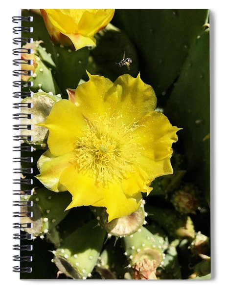 Prickly Pear And The Bee Spiral Notebook