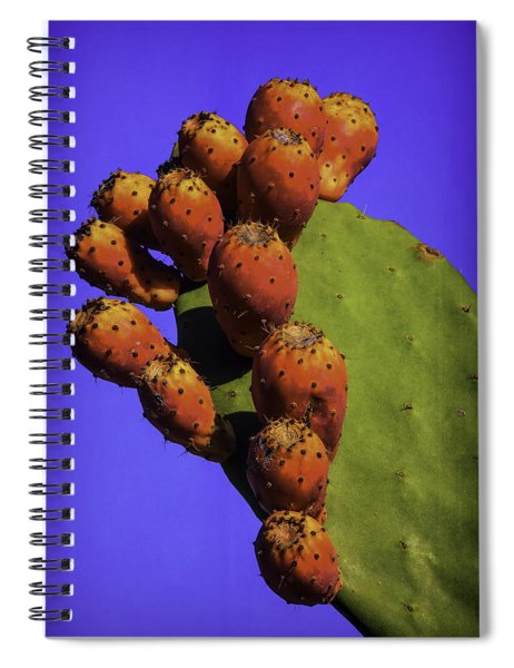Prickly Pear Cacti Spiral Notebook
