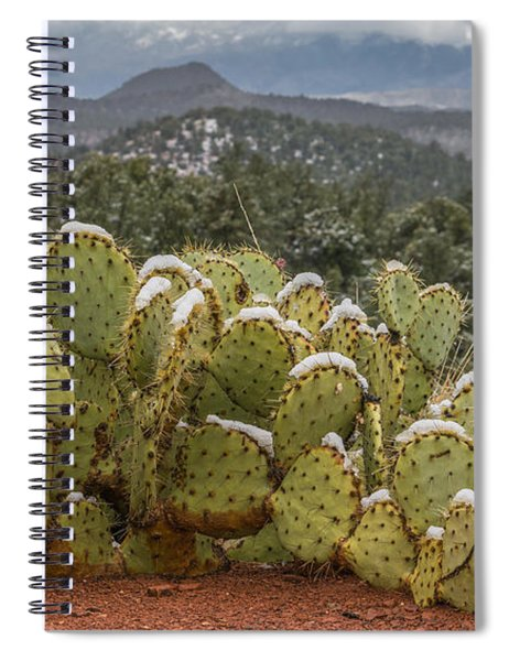 Cactus Country Spiral Notebook