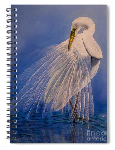 Princess Of The Mist Spiral Notebook