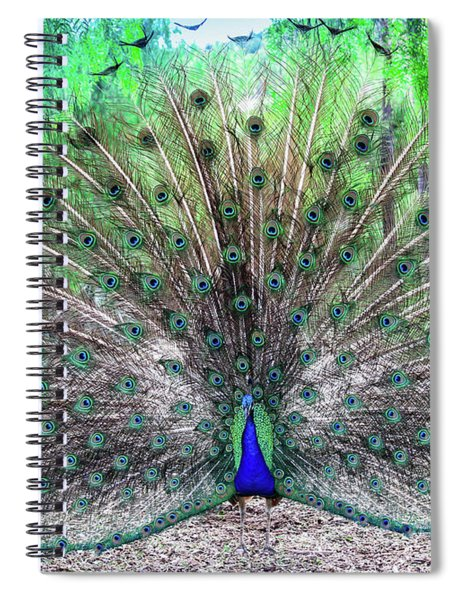 Spiral Notebook featuring the photograph Proud by Alison Frank