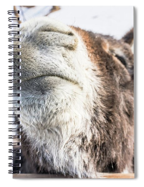 Pucker Up, Baby Spiral Notebook
