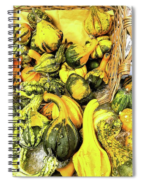 Pumpkin Family Spiral Notebook
