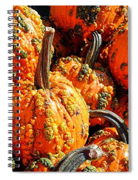Pumpkins With Warts Spiral Notebook