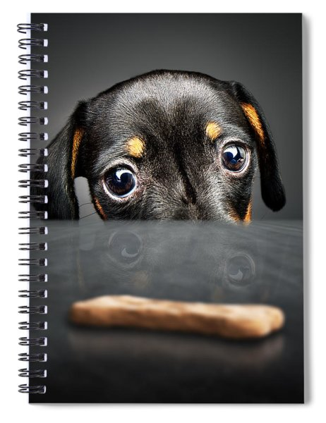 Puppy Longing For A Treat Spiral Notebook