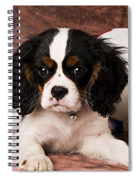 Puppy With Ball Spiral Notebook