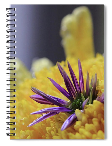 Purple And Yellow Floral Spiral Notebook