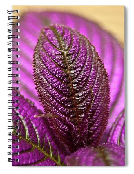 Purple Coleus Spiral Notebook