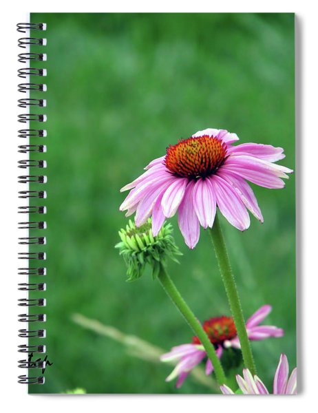 Purple Cone Spiral Notebook