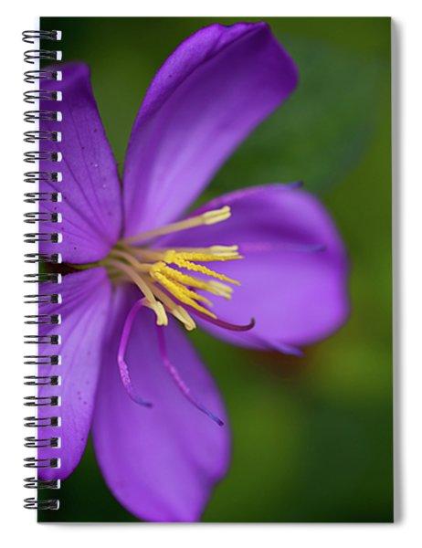 Purple Flower Macro Spiral Notebook