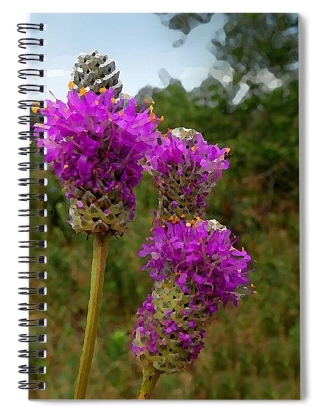 Purple Prairie Clover Spiral Notebook