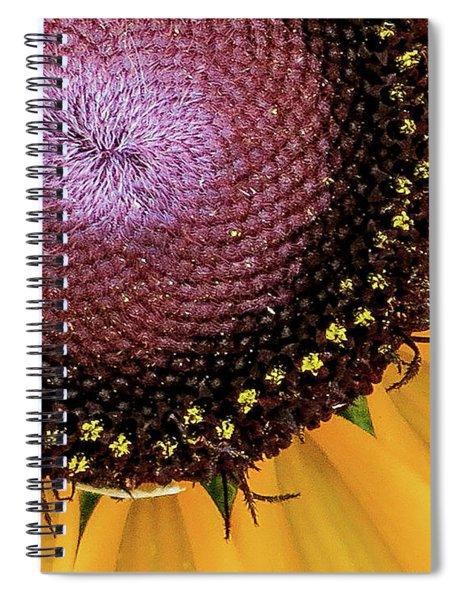Purple Spirals Spiral Notebook