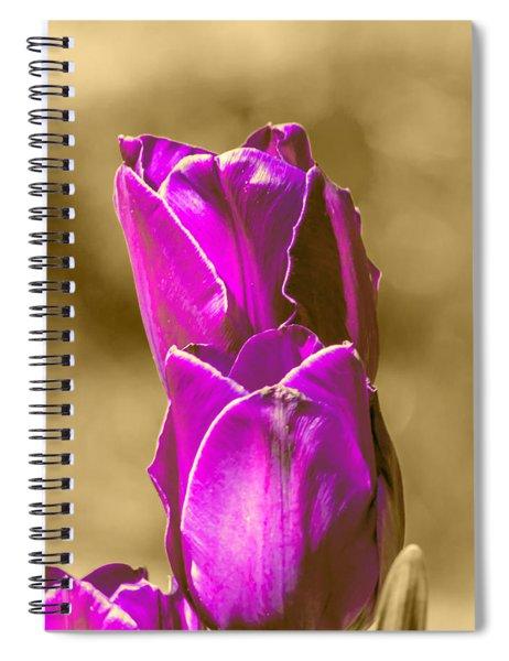 Purple Tulips Sepia Background Spiral Notebook