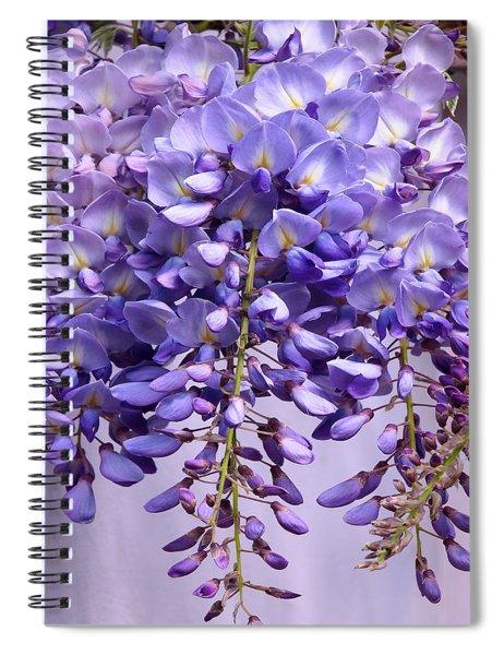 Purple Wisteria Flowers Spiral Notebook