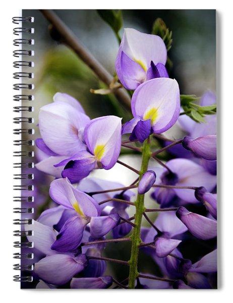 Purple Wisteria Spiral Notebook