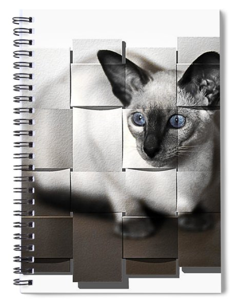 Puzzled Kitty Spiral Notebook