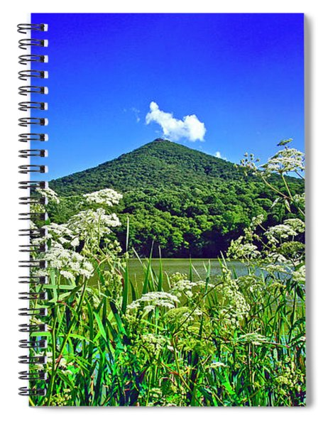 Queen Anne's Lace, Peaks Of Otter  Spiral Notebook