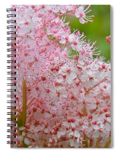 Queen Of The Prairie Nature Art Spiral Notebook