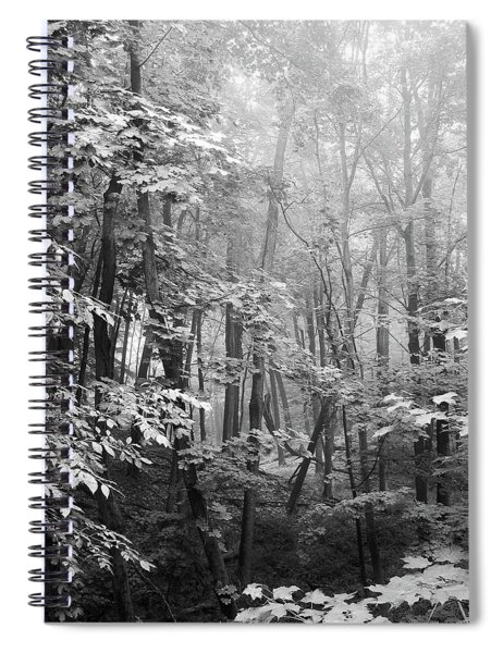 Quiet In The Mist  Spiral Notebook