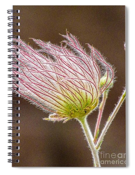 Quirky Red Squiggly Flower 1 Spiral Notebook