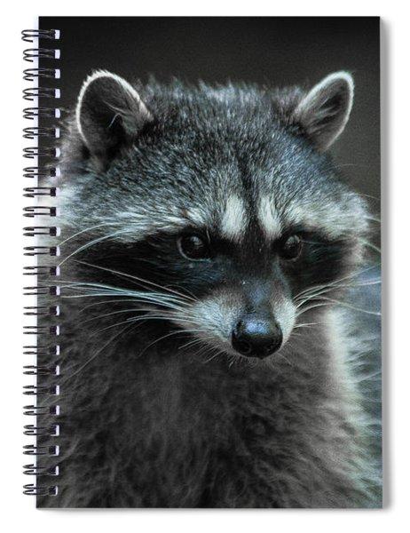 Raccoon 2 Spiral Notebook