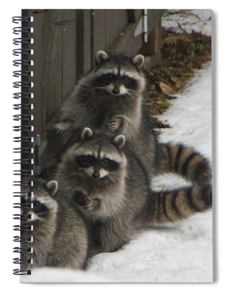 The Three Stooges - 2 Spiral Notebook