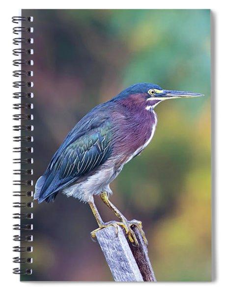 Rainbow Heron Spiral Notebook