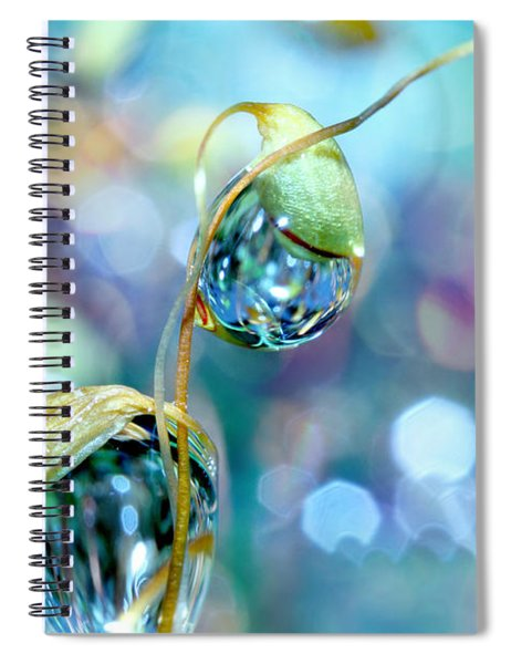 Rainbow Moss Drops Spiral Notebook