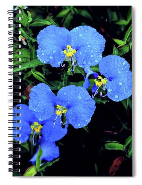 Raindrops In Blue Spiral Notebook