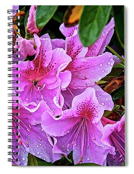 Raindrops, Magenta Lilies  Spiral Notebook
