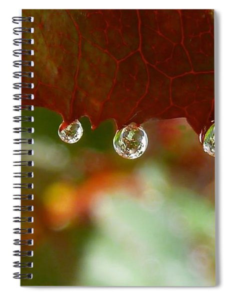 Raindrops On A Red Leaf Spiral Notebook
