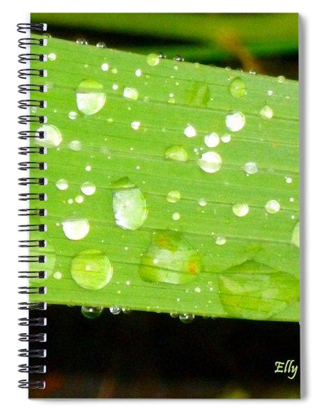Raindrops On Leaf Spiral Notebook