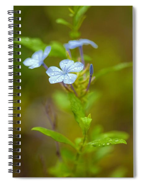 Raindrops On Petals Spiral Notebook