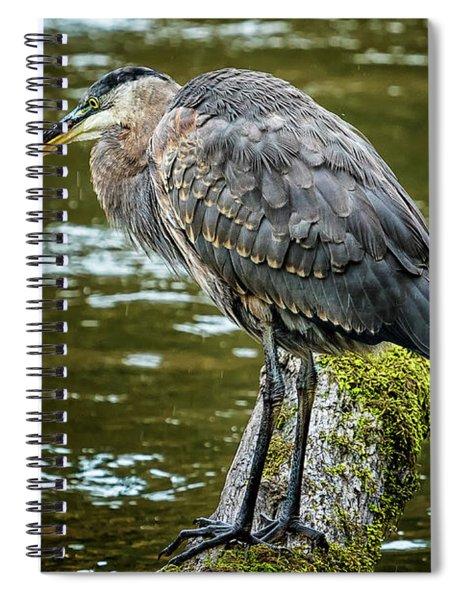 Rainy Day Heron Spiral Notebook by Belinda Greb