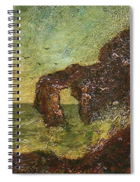 Ralph Albert Blakelock  1847  1919  Marine, Seal Rock Spiral Notebook
