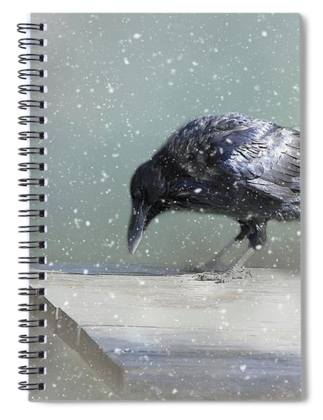 Raven In Winter Spiral Notebook
