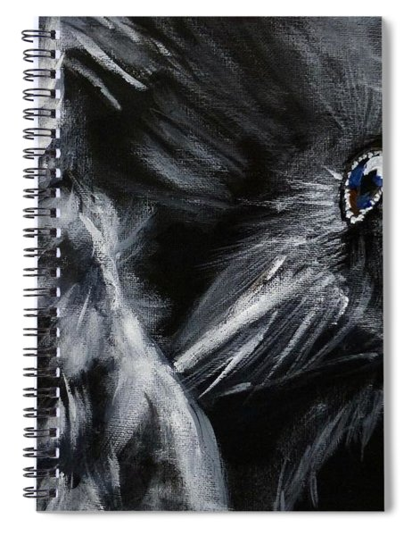 Raven Preening Spiral Notebook